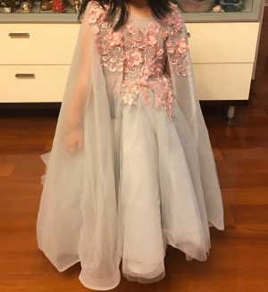 Stunning dress, the picture doesn't do it justice!