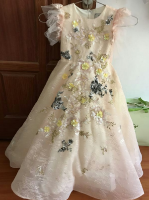 The dress is Beautiful - exactly like the picture courier was perfectly on time