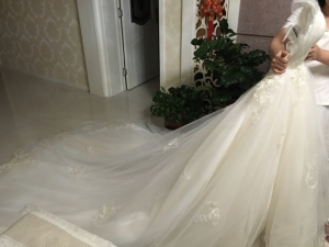 The dress arrived today and I can't say how happy I am! :)